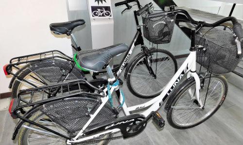 segrawagen-noleggio-biciclette